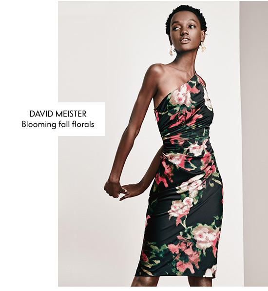 Best Selling Dresses: David Meister